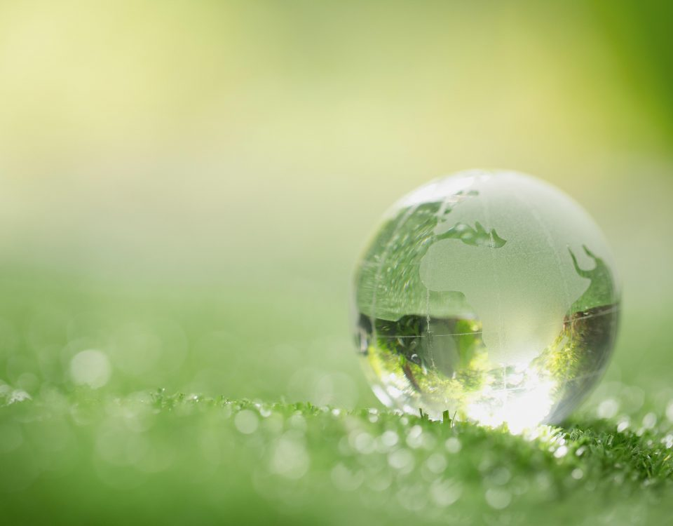 Priviglaze Sustainability
